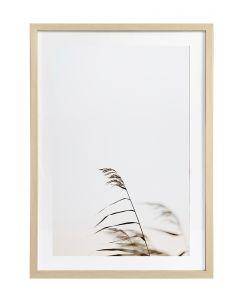 Taulu Grass 1 50x70cm DECO