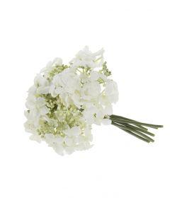 Hortensia valkoinen 24cm BLOSSOM